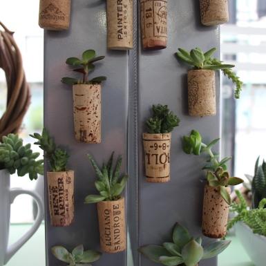 Succulent Cork Magnets