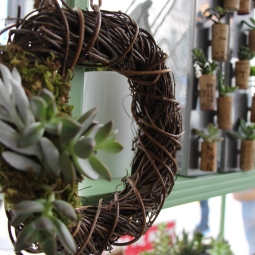 Grapewood Wreath with Succulent Cluster