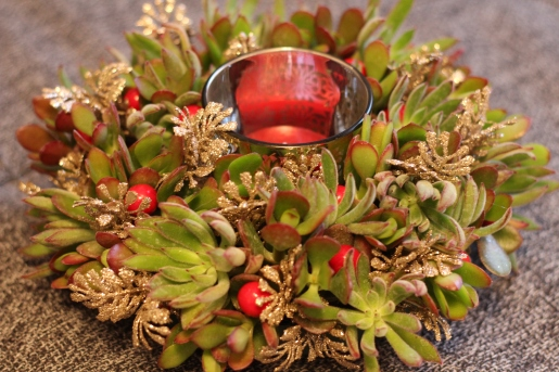 Succulent Wreath with Accents