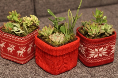 Holiday Sweater Cubes